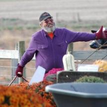 Bill purple